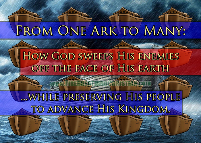 From One Ark To Many: How God Is Preserving His People And Purging His Enemies