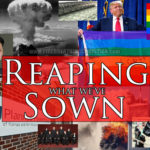 Reaping What We've Sown
