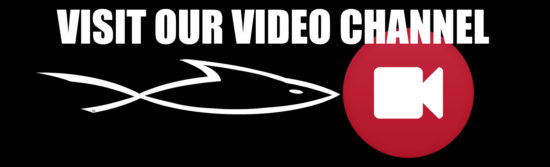 This image has an empty alt attribute; its file name is VideoChannelAd-550x167.jpg