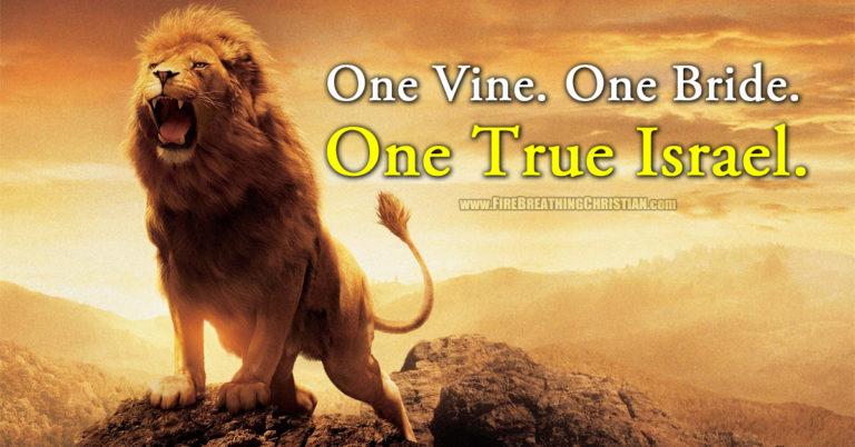 One Vine. One Bride. One True Israel.